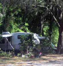 photo of RV under moss-draped oak tree